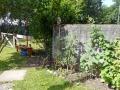 Garten mit Gemüse und Beeren